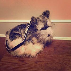 Cute puppy 🐶 purse 👜 (⚠️not a real dog)